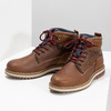 Men's Winter Ankle Boots bata, brown , 896-3677 - 16